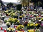 svi sveti, viroviticko groblje